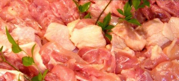 宮崎県産エビス鶏BBQセット