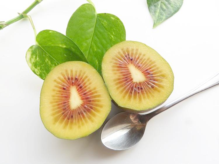 kiwifruit003