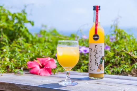 石垣島産プレミアム有機パイナップルジュース500ml×2本セット やえやまファーム