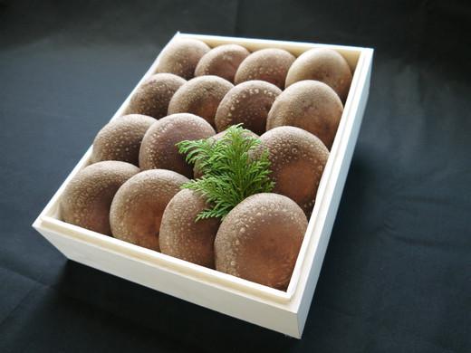 特選「想いの茸」 贈答用木箱(小)700g