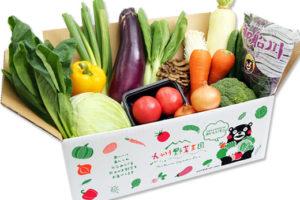 元気野菜セットお手軽(S)コース10品目
