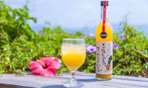 石垣島産プレミアム有機パイナップルジュース500ml×2本セット