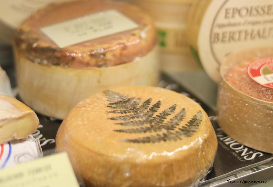 フロマージュ ドゥ ミテス 丸チーズ