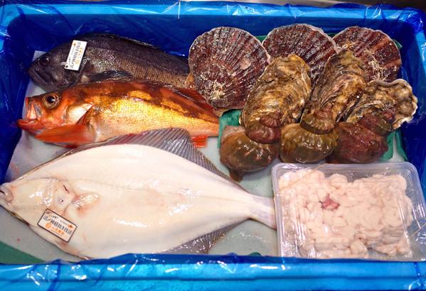 鮮魚詰め合わせセット