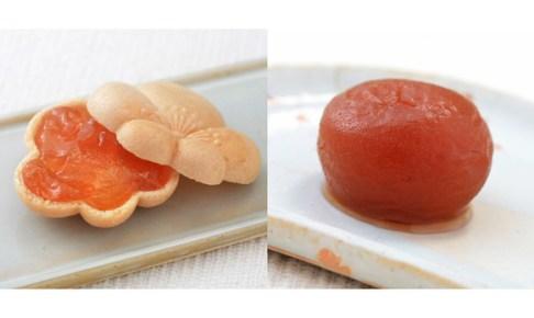 杏もなか・杏花の実セット (杏花の実4個・杏もなか 5個) 信州・杏菓子専門店 杏花堂